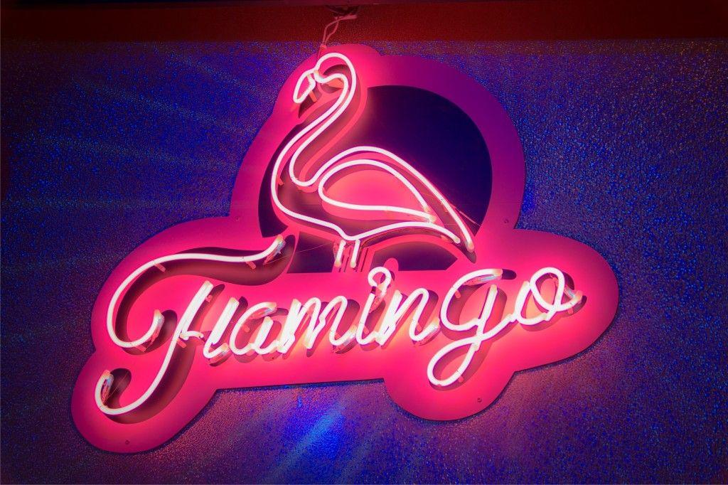flamingo1 more&more.jpg